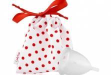Co je menstruační kalíšek LadyCup?